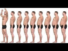 perdida grasa